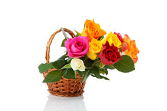 Cane basket with colorful roses Stock Images