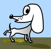 Cane bianco. illustrazione vettoriale