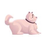 Cane bianco grasso, paffuto, lanuginoso sveglio e divertente illustrazione vettoriale