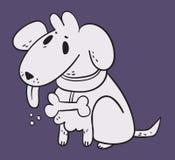 Cane bianco nel fondo porpora Fotografia Stock