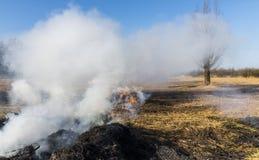 Cane Burning Ash Giethoorn stock foto's