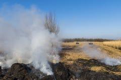 Cane Burning Giethoorn stock foto's