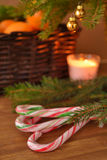 Cane candies under Christmas tree Stock Photography