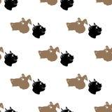 Cane Cat Seamless Animal Pattern Fotografia Stock