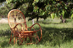 A cane chair is in a garden Stock Photography