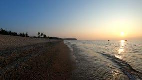 Cane che cammina sulla spiaggia con il suo padrone al tramonto archivi video