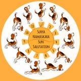 Cane che fa posizione di yoga di Surya Namaskara Fotografia Stock Libera da Diritti