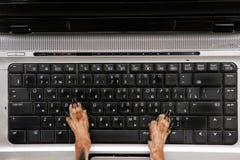 Cane che lavora alla visualizzazione superiore del computer Immagini Stock Libere da Diritti
