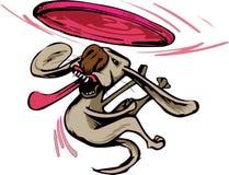 Cane che prende un frisbee Fotografia Stock