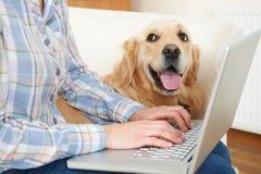 Cane che si siede accanto al proprietario facendo uso del computer portatile Immagini Stock Libere da Diritti