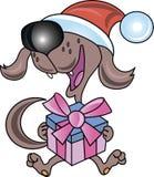 Cane con il regalo Fotografia Stock