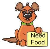 Cane con l'alimento di bisogno del segno Fotografia Stock Libera da Diritti