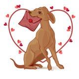 Cane con un biglietto di S. Valentino Postino del cane Fotografia Stock Libera da Diritti
