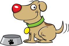 Cane con un piatto del cane Fotografia Stock