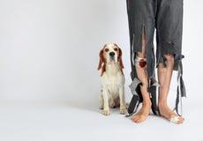 Cane da lepre ed il suo proprietario in pantaloni lacerati e nei piedi pungenti Fotografia Stock Libera da Diritti