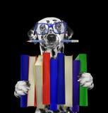 Cane dalmata sveglio che tiene una grande pila di libri -- isolato sul nero Immagine Stock Libera da Diritti