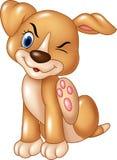 Cane del bambino del fumetto che graffia un prurito isolato sul fondo bianco Fotografia Stock