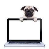 Cane del computer fotografie stock libere da diritti