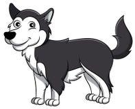 Cane del fumetto del Malamute d'Alasca illustrazione di stock