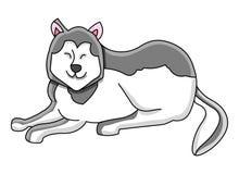 Cane del husky illustrazione di stock