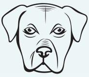Cane del pugile illustrazione vettoriale