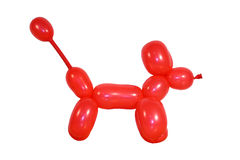 Cane dell'aerostato Fotografia Stock