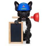 Cane dell'idraulico con il tuffatore immagine stock libera da diritti