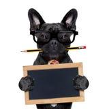 Cane dell'impiegato di concetto Fotografia Stock