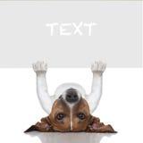 Cane dell'insegna Fotografia Stock Libera da Diritti