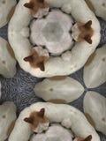 Cane della chihuahua del caleidoscopio Fotografie Stock Libere da Diritti