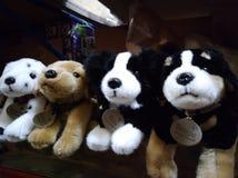 Cane della peluche fotografia stock