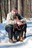 Cane della razza un Rottweiler sulla camminata   Fotografie Stock