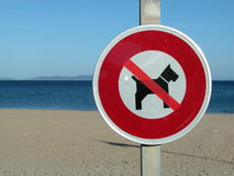 cane della spiaggia nessun segno Fotografie Stock Libere da Diritti