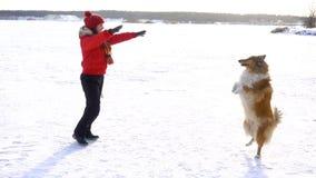 Cane delle collie che gioca sul campo di neve con la ragazza stock footage