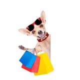 Cane di acquisto fotografia stock