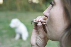 Cane di addestramento del proprietario dell'animale domestico facendo uso del fischio fotografia stock libera da diritti