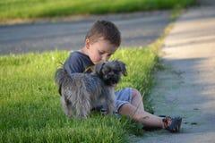 Cane di amore fotografie stock libere da diritti