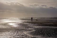 Cane di camminata della persona al giorno tempestoso alla spiaggia Fotografia Stock