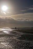 Cane di camminata della persona al giorno tempestoso alla spiaggia Fotografie Stock