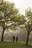 Cane di camminata delle coppie attraverso il parco nebbioso Immagine Stock Libera da Diritti