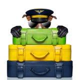 Cane di capitano dei bagagli Fotografia Stock