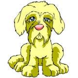 Cane di cucciolo triste isolato Fotografie Stock