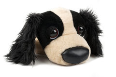 Cane di giocattolo della peluche Immagini Stock Libere da Diritti
