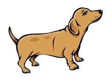 Cane di Weiner illustrazione vettoriale