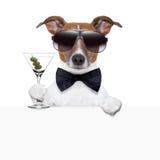 Insegna divertente del cane del cocktail Fotografie Stock Libere da Diritti