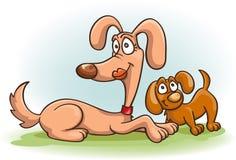 Cane e cucciolo Immagini Stock Libere da Diritti