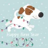 Cane e luci di Natale bianchi divertenti Immagini Stock