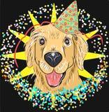 cane festivo di Labrador di divertimento nel berretto da notte Fotografie Stock