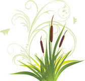 Cane and grass with floral ornament Royalty Free Stock Photo