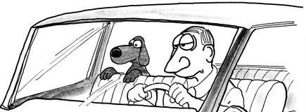 Cane nel sedile posteriore Immagine Stock Libera da Diritti